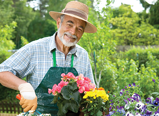 a senior tending his flowers